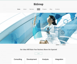 BizGroup  Css3Template Downloads: 756