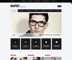 Respect Business Css3 Template
